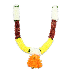 COLOURFUL GARLAND 1