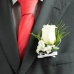 WHITE ROSE BUTTONHOLE 2